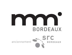 Formation web Bordeaux DUT MMI