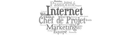 formation web : chef de projet digital